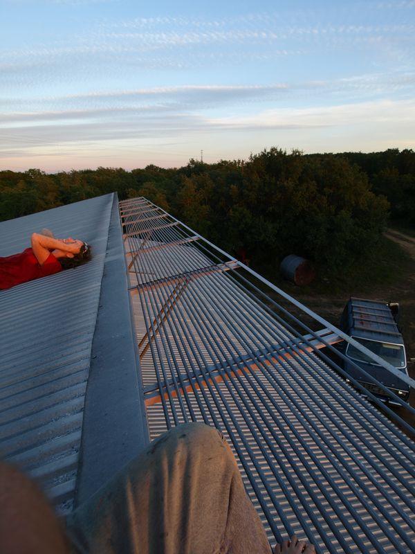Roof watchers